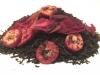 Granatapfel - Cranberry